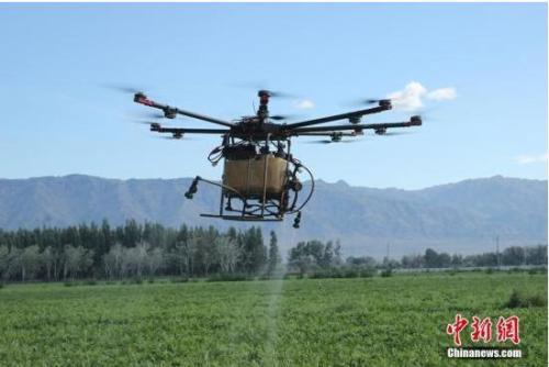 资料图:新疆农民利用高科技产品飞机对农作物开展空中喷洒农药。哈那提 摄